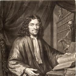 Cornelis Gravezande, Physician