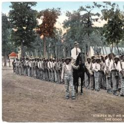 Stripes But No Stars: Convicts Marching to Work: The Good Road Makers in Dixie Land