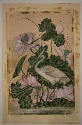 Heron and Lotuses