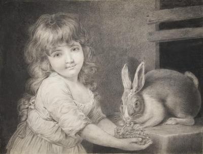 The Favorite Rabbit
